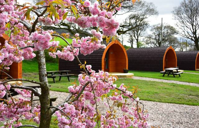 Lakeside Pods and Tipis Launch